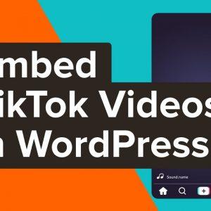How to Embed TikTok Videos in WordPress